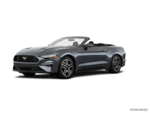 New Car 2019 Ford Mustang EcoBoost